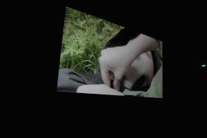 Back to Nature - Nico Vascellari
